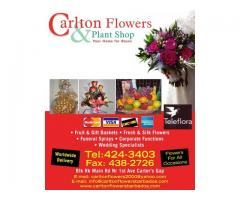 Carlton Flowers & Plant Shop